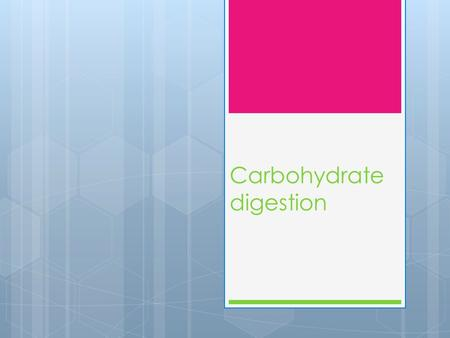 Carbohydrate digestion. You should know:  Starch, the role of salivary and pancreatic amylases and of maltase located in the  intestinal epithelium.