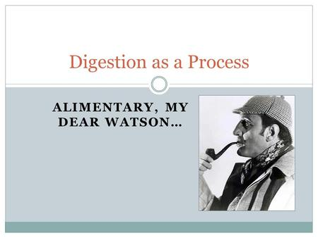 ALIMENTARY, MY DEAR WATSON… Digestion as a Process.