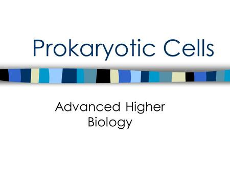 "Prokaryotic Cells Advanced Higher Biology. Prokaryotic Cells "" pro "" – before"" karyo ""– nucleus Prokaryotes were probably the first forms of life on earth."