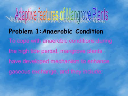 Problem 1:Anaerobic Condition To cope with anaerobic conditions during the high tide period, mangrove plants have developed mechanism to enhance gaseous.