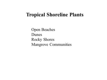 Tropical Shoreline Plants Open Beaches Dunes Rocky Shores Mangrove Communities.