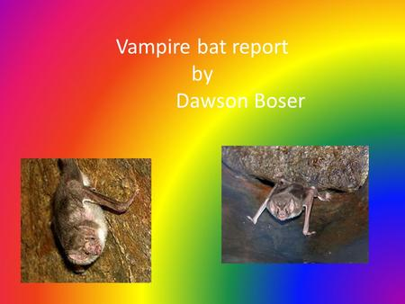 Vampire bat report by Dawson Boser. Habitat: The vampire bats live in northern Mexico. lives in caves, old wells, hollow trees, and building.