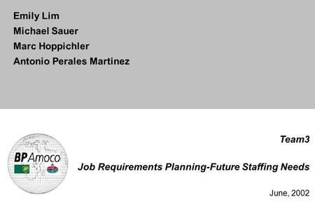 Team3 Job Requirements Planning-Future Staffing Needs June, 2002 Emily Lim Michael Sauer Marc Hoppichler Antonio Perales Martinez.