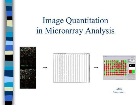 Image Quantitation in Microarray Analysis More tomorrow...