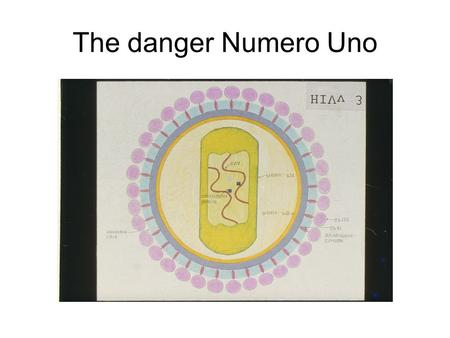 The danger Numero Uno. That's how it reaches you Unprotected sexual intercourse Intravenous drug abuse and shared needles From a HIV positive mother to.