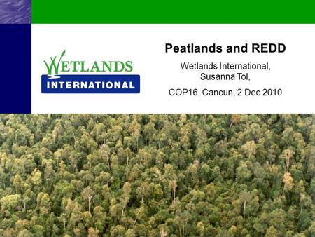 Wetlands International, Susanna Tol,