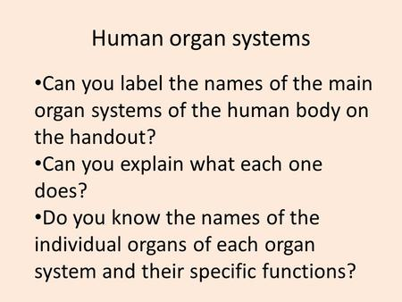 Human organ systems Can you label the names of the main organ systems of the human body on the handout? Can you explain what each one does? Do you know.