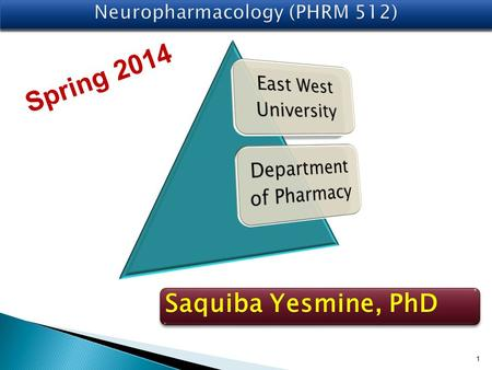 1 Saquiba Yesmine, PhD Spring 2014. Major Neurotransmitters in the Body NeurotransmitterRole in the Body AcetylcholineA neurotransmitter used by the spinal.