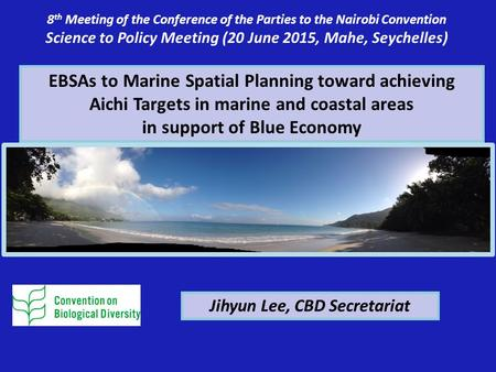 EBSAs to Marine Spatial Planning toward achieving Aichi Targets in marine and coastal areas in support of Blue Economy 8 th Meeting of the Conference of.