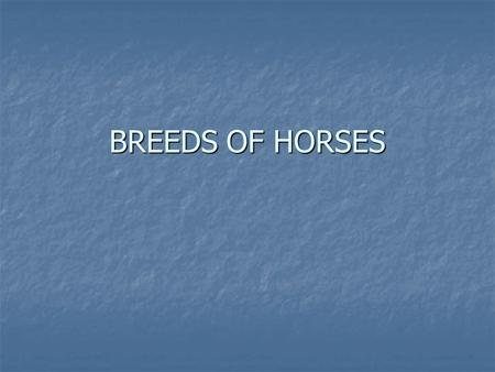 BREEDS OF HORSES.