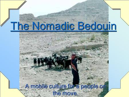 The Nomadic Bedouin A mobile culture for a people on the move.