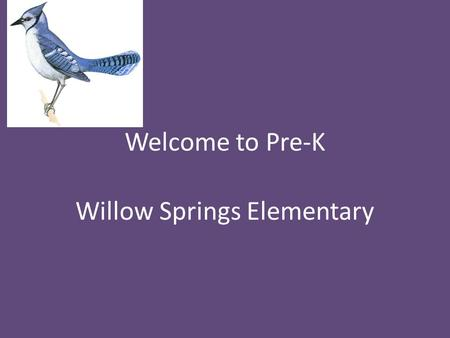 Welcome to Pre-K Willow Springs Elementary. A Little about Me! This is my 7 th year at Willow Springs and my 7 th year teaching Pre-k.