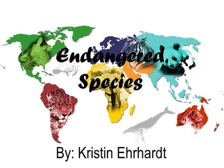 Endangered Species By: Kristin Ehrhardt. What is an Endangered Species? To be endangered means that an animal is in danger of becoming extinct sometime.