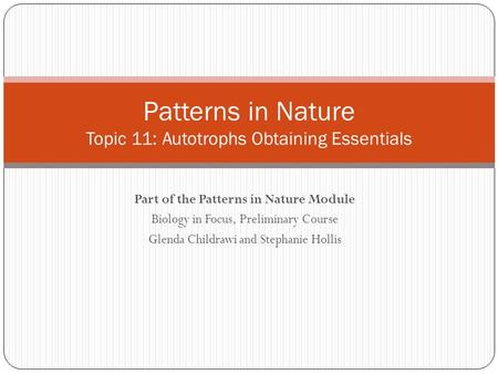 Part of the Patterns in Nature Module Biology in Focus, Preliminary Course Glenda Childrawi and Stephanie Hollis Patterns in Nature Topic 11: Autotrophs.