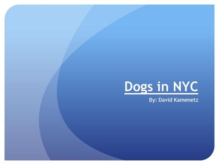 Dogs in NYC By: David Kamenetz. Yellow Lab- Gordon Gordon is an extremely friendly dog. He is a Yellow Lab Mix. He is 4 and a half years old. Gordon loves.