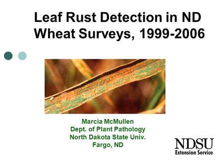 Marcia McMullen Dept. of Plant Pathology North Dakota State Univ. Fargo, ND Leaf Rust Detection in ND Wheat Surveys, 1999-2006.