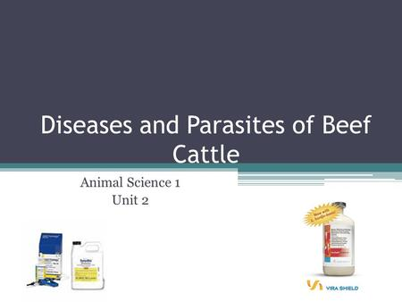 Diseases and Parasites of Beef Cattle Animal Science 1 Unit 2.