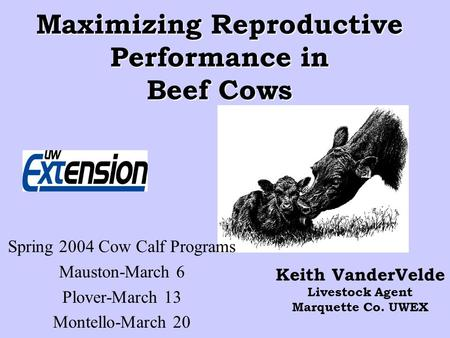 Maximizing Reproductive Performance in Beef Cows Keith VanderVelde Livestock Agent Marquette Co. UWEX Spring 2004 Cow Calf Programs Mauston-March 6 Plover-March.