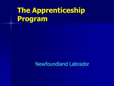 The Apprenticeship Program Newfoundland Labrador.