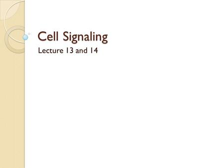 Cell Signaling Lecture 13 and 14. Ligand-activated Notch undergoes 2 cleavages before releasing the transcription factor ADAM10: A disintegrin and Metalloprote.