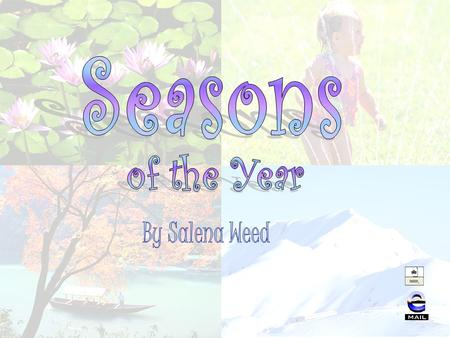 What are seasons? Spring Summer Fall Winter Seasonal Weather Table Favorite Seasons Bar Graph & Pie Chart Seasons Video and Website Extension Activities.