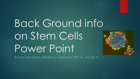Back Ground info on Stem Cells Power Point EVAN E. RAYGAN L. KRISTIN M. KAHLAN H. TREY W. JACOB W.