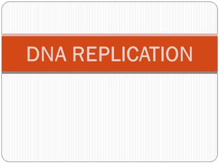 DNA REPLICATION.