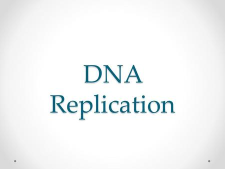 DNA Replication. DNA Function Recall: DNA is the carrier of hereditary information for all living organisms. DNA controls the activity of all cells by.