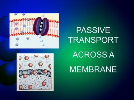 PASSIVE TRANSPORT ACROSS A MEMBRANE. Overview of Passive & Active Transport Cell Transport Passive Transport DiffusionOsmosis Facilitated Diffusion Active.