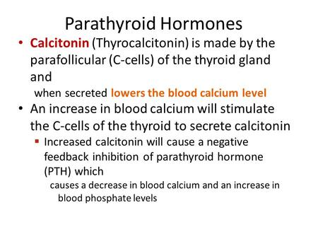 Parathyroid Hormones Calcitonin (Thyrocalcitonin) is made by the parafollicular (C-cells) of the thyroid gland and when secreted lowers the blood calcium.