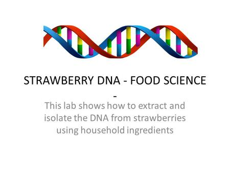 STRAWBERRY DNA - FOOD SCIENCE - This lab shows how to extract and isolate the DNA from strawberries using household ingredients.