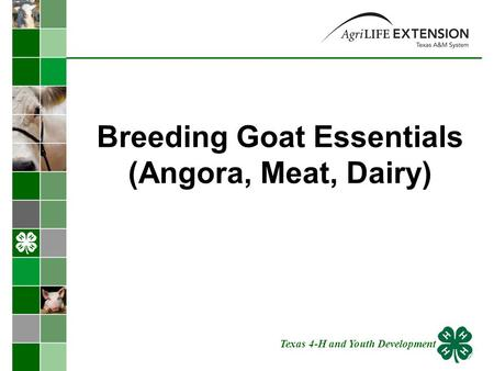 Breeding Goat Essentials (Angora, Meat, Dairy) Texas 4-H and Youth Development.
