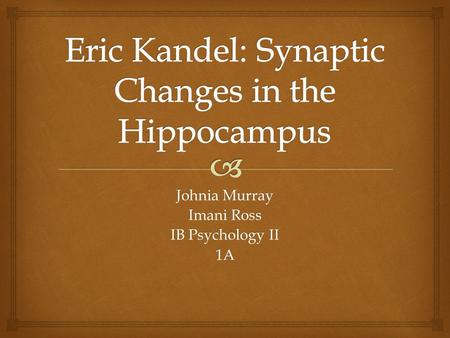 Eric Kandel: Synaptic Changes in the Hippocampus