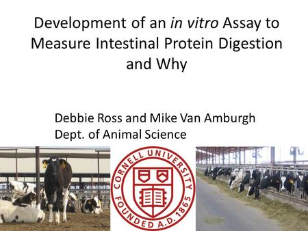 Development of an in vitro Assay to Measure Intestinal Protein Digestion and Why Debbie Ross and Mike Van Amburgh Dept. of Animal Science.