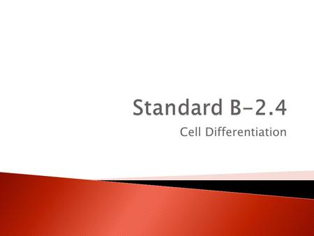 Standard B-2.4 Cell Differentiation.