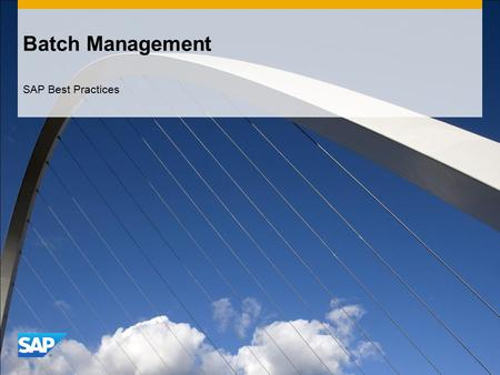 Batch Management SAP Best Practices.