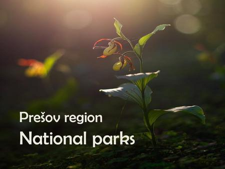 Prešov region National parks. National park Pieniny -Abbrev PIENAP -Noticed as national park in 1967 -Situated in the north of Prešov region -The smallest.