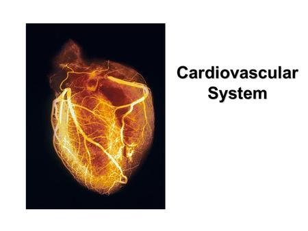 Cardiovascular System ARTERIES Blood Vessels--ARTERIES Transport blood AWAY from the heart. Large Arteries are Thick like a garden hose Elastic (distensible)