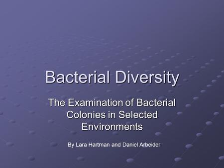 The Examination of Bacterial Colonies in Selected Environments