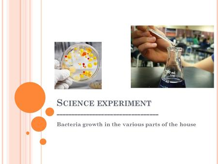 S CIENCE EXPERIMENT ---------------------------------- Bacteria growth in the various parts of the house.
