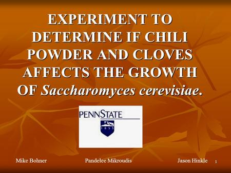 1 EXPERIMENT TO DETERMINE IF CHILI POWDER AND CLOVES AFFECTS THE GROWTH OF Saccharomyces cerevisiae. Mike Bohner Pandelee MikroudisJason Hinkle.