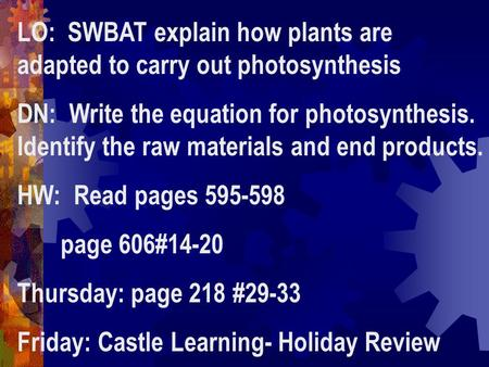 LO: SWBAT explain how plants are adapted to carry out photosynthesis DN: Write the equation for photosynthesis. Identify the raw materials and end products.