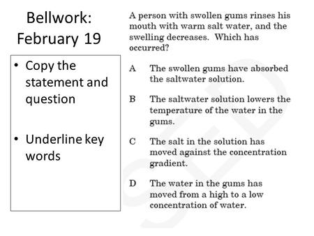 Bellwork: February 19 Copy the statement and question Underline key words.