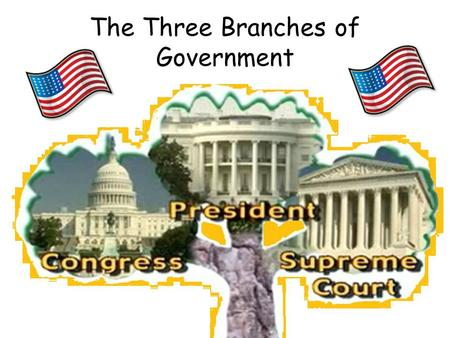 The Three Branches of Government By Martina Anderson Valdosta State University ITED 8300.