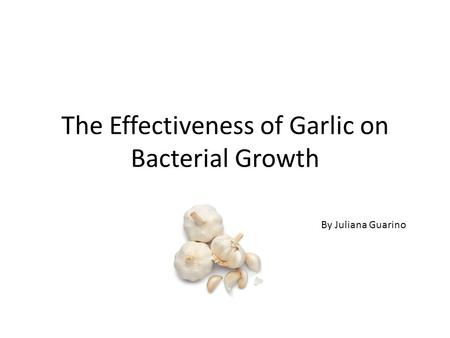 The Effectiveness of Garlic on Bacterial Growth By Juliana Guarino.