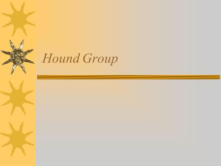 Hound Group.  May be the oldest purebred dogs.  They are a very diverse lot with a common ancestral trait used for hunting.  They can be used for sight.