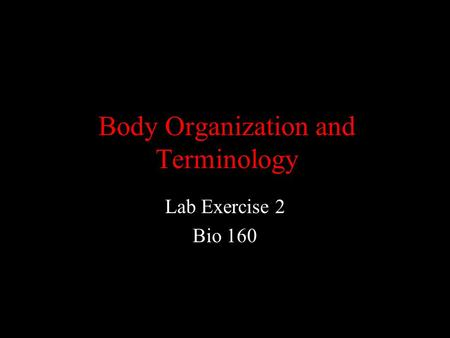 Body Organization and Terminology Lab Exercise 2 Bio 160.