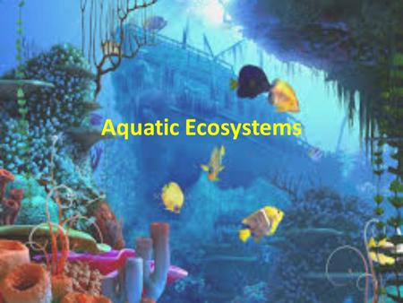 "Aquatic Ecosystems. What is an aquatic ecosystem? In Spanish, the word ""agua"" means ""water"". In Italian, the word ""acqua"" means ""water"". Using those word."