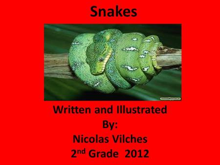 Snakes Written and Illustrated By: Nicolas Vilches 2 nd Grade 2012.