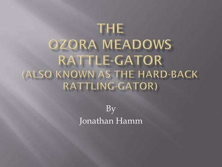By Jonathan Hamm. I first discovered the Hard-Back Rattling-Gator when I was in Ozora Meadow woods in Tribble Mill Park in Lawrenceville, Georgia.